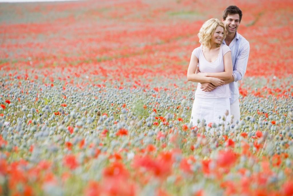 Families in poppy field in summertime